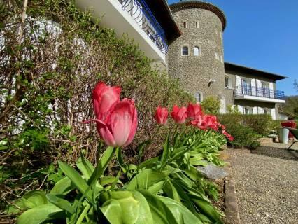 Property for sale Villecomtal-sur-Arros Gers