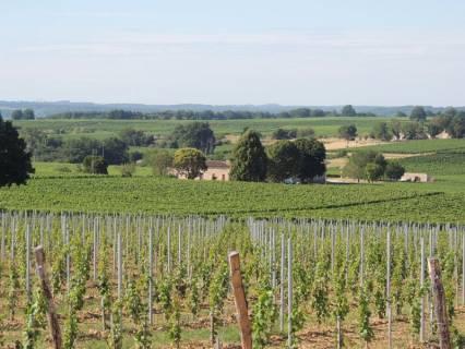 Property for sale Castillon-la-Bataille Gironde