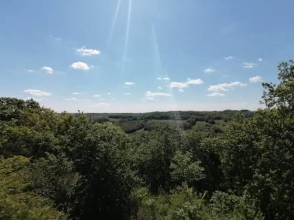 Property for sale Lacour Tarn-et-Garonne