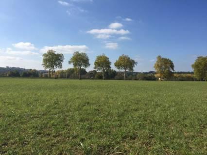 Property for sale Valence-sur-Baïse Gers