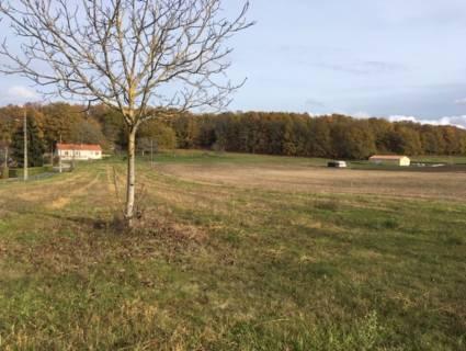 Property for sale Lalinde Dordogne